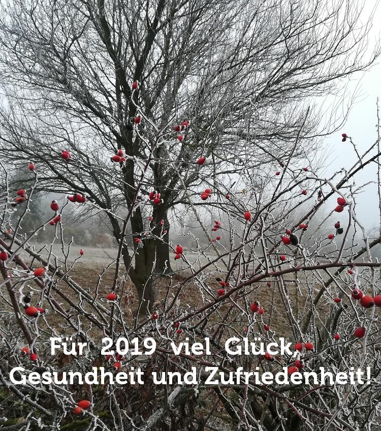 Neujahr2019
